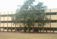 सेंट मैरी कान्वेंट सीनियर सेकेंडरी स्कूल