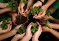 शिप्रा किनारे 18 किमी परिक्षेत्र में साढ़े चार लाख पौधे रोप जाएंगे